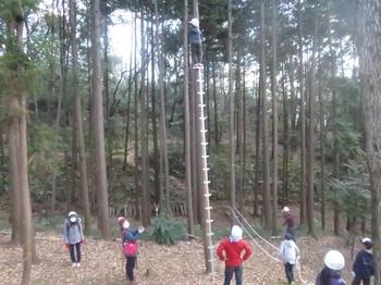 おお怖い一本梯子登り.JPG
