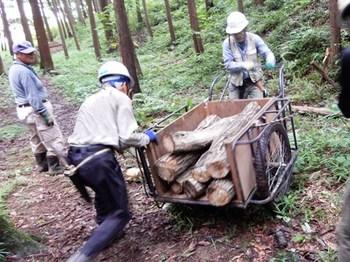 ホダ木の運搬.JPG