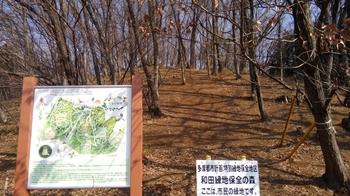 森を守る.JPG