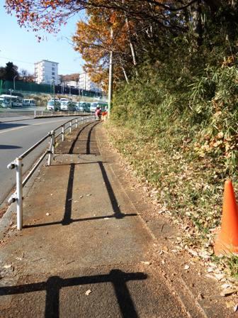 清掃済みの歩道.JPG