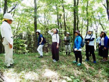2西の山で雑木林の成り立ちなど説明.JPG