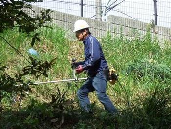 のり面草刈り.jpg