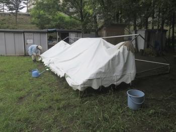 テント裏返して拭き取り洗い.jpg
