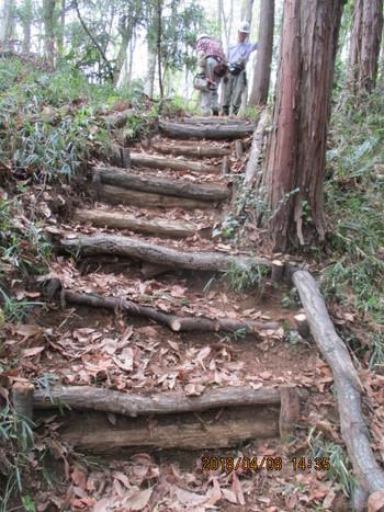 中の谷への階段補修.JPG