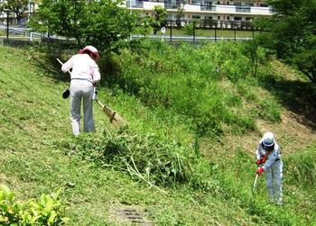刈草を掃き下ろす.JPG