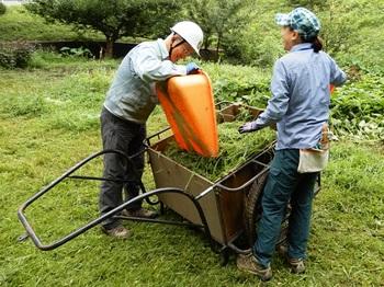 刈草を集める.JPG