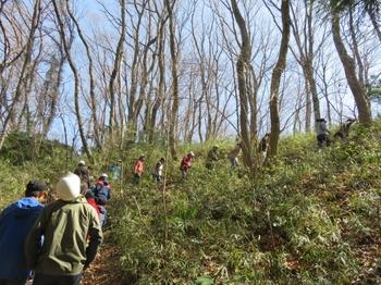 山道をのんびり登る.JPG