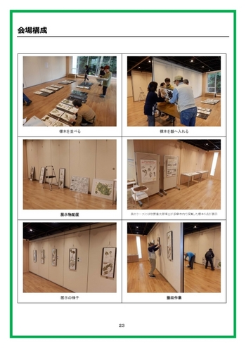 標本展報告書_2_23ページ_会場構成.jpg