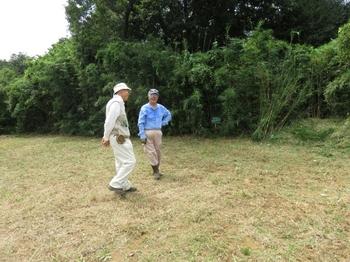 草刈り後の飛び地.JPG