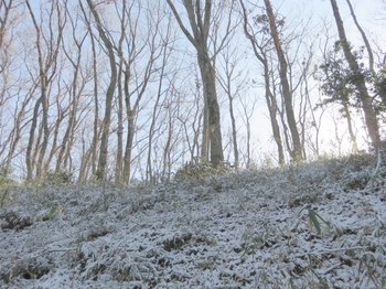 薄ら雪化粧の西の山.JPG