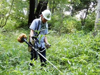 遊歩道の草刈.JPG