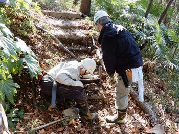 階段の修理.JPG
