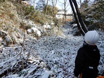 雪に覆われた西の谷.JPG